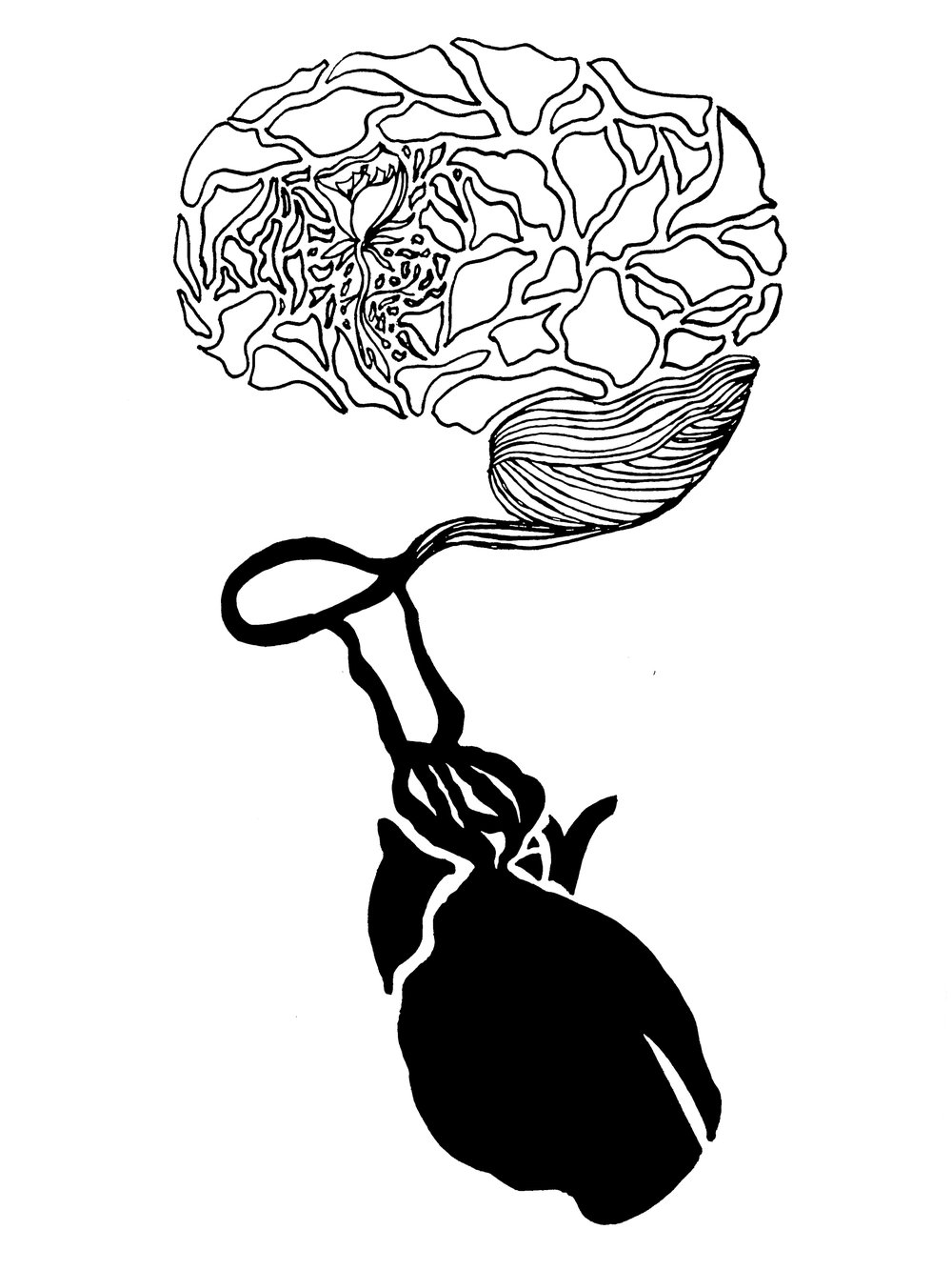 brain and heart.jpg