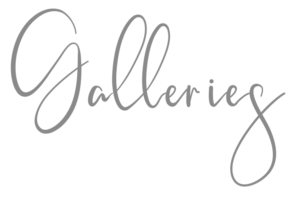 Galleries-grey_Mei Lin Barral Photography.png