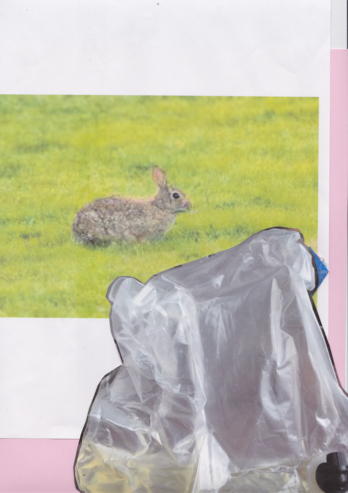 Rabbit and Franzia bag Assembled 2016 Scanned October 2018
