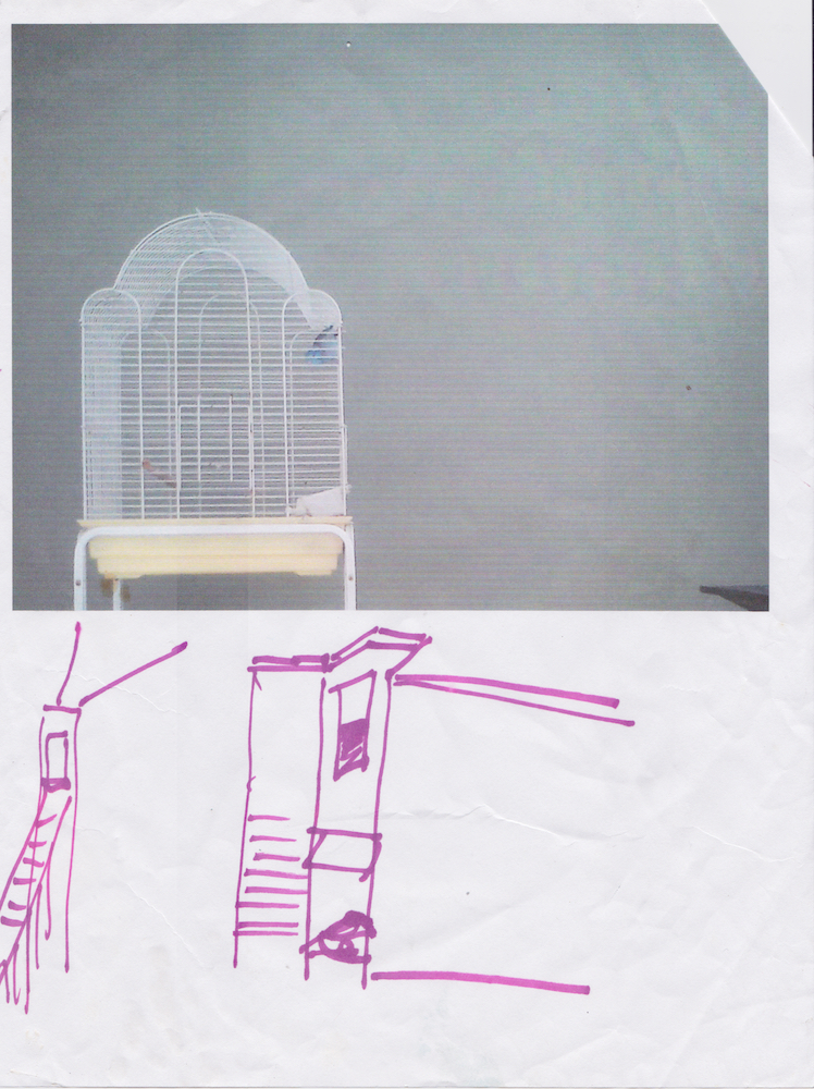 Mary Kattiny's bird cage and sketch Printed 2015 Scanned October 2018