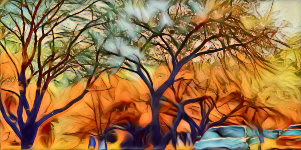 autumn fall orange leaves trees park landscape photography photo edit effect
