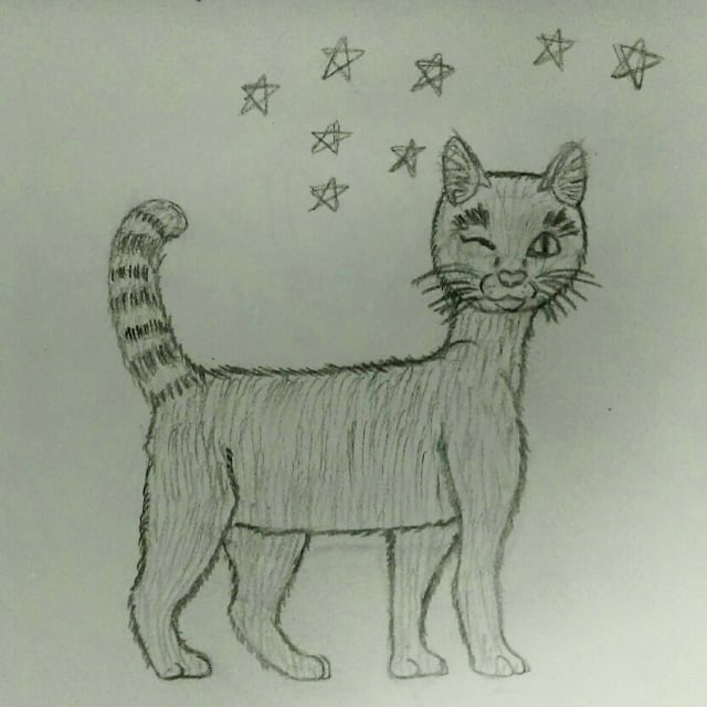 Kitty redraw cat redrawing pencil drawing