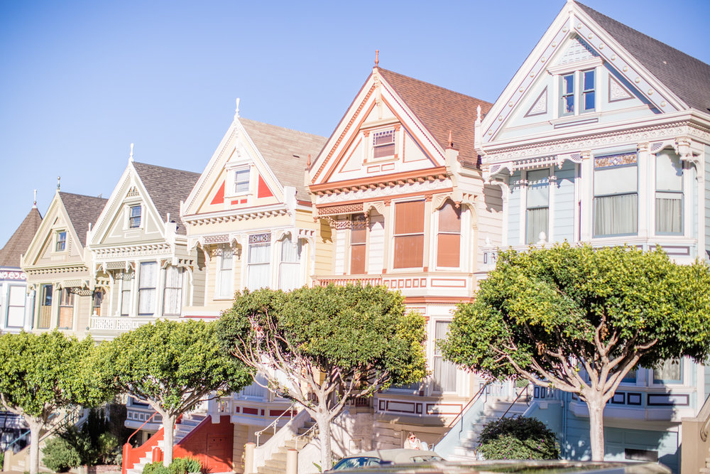 Painted Ladies Photography
