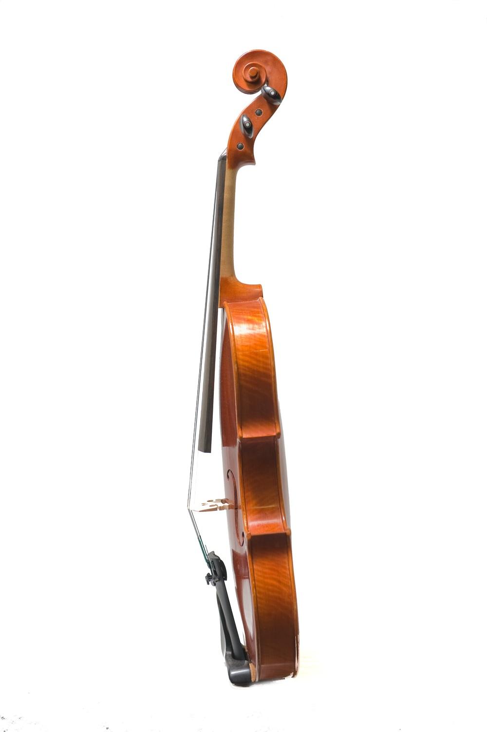 GMS Conservatory Violin side.jpg