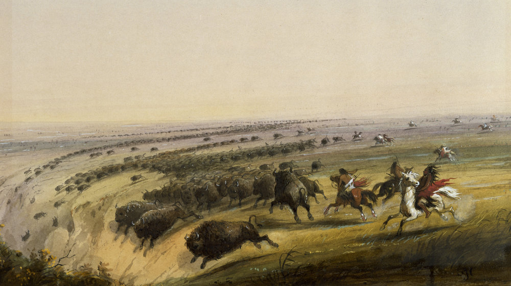 "Alfred Jacob Miller, ""Hunting Buffalo"""