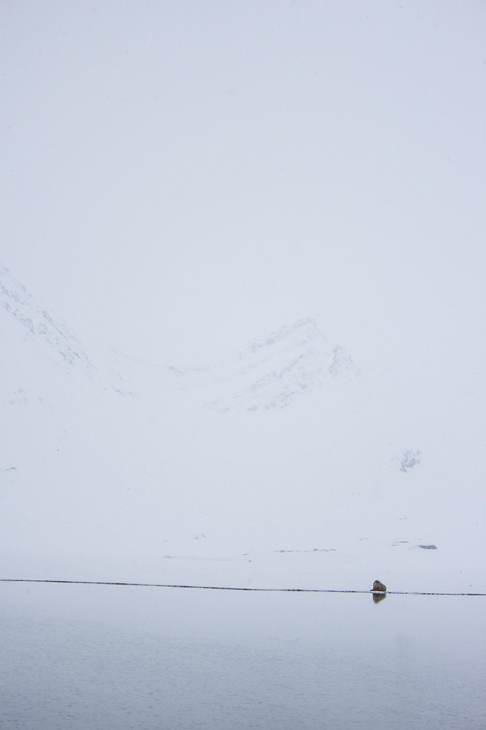 Arctic_Pt3 (9 of 51).jpg