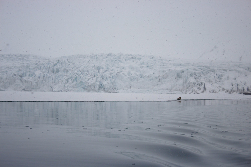 Arctic_Pt3 (18 of 51).jpg