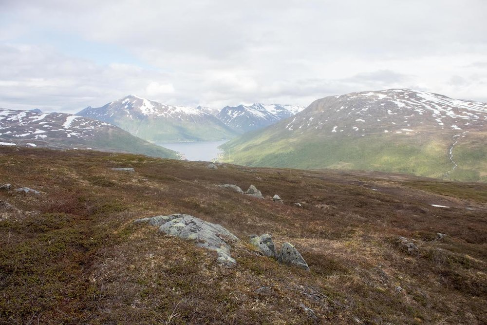 The Aleksandersen family's reindeer herding land — Kvaløya, Norway — June 2017