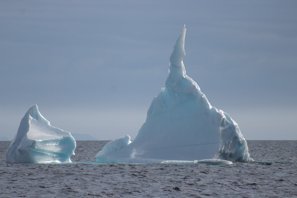 Iceberg with Sun Shining Through 7.jpg