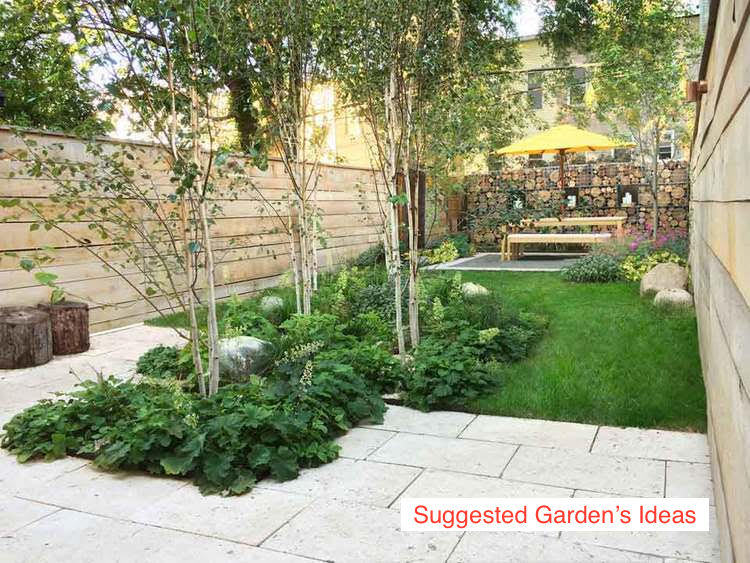 Halsey Street - Suggested garden ideas_3.jpg