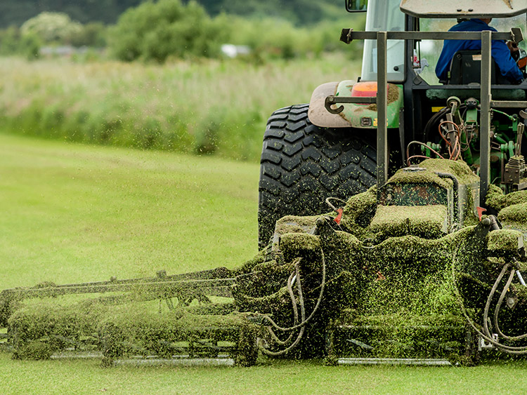 Buy_Lawn_Mower_Blades_Online.jpg