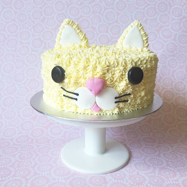 Brisbane Custom Cake Decorator | Holly Eloise Cake Artist | Kids cat cake