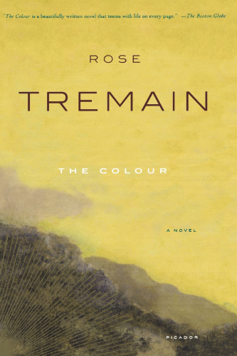 The Colour by Rose Tremain Another one by Rose Tremain, set during the New Zealand Gold Rush