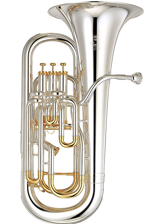 LIsa played the euphonium in middle school and high school and traveled with a regional band.