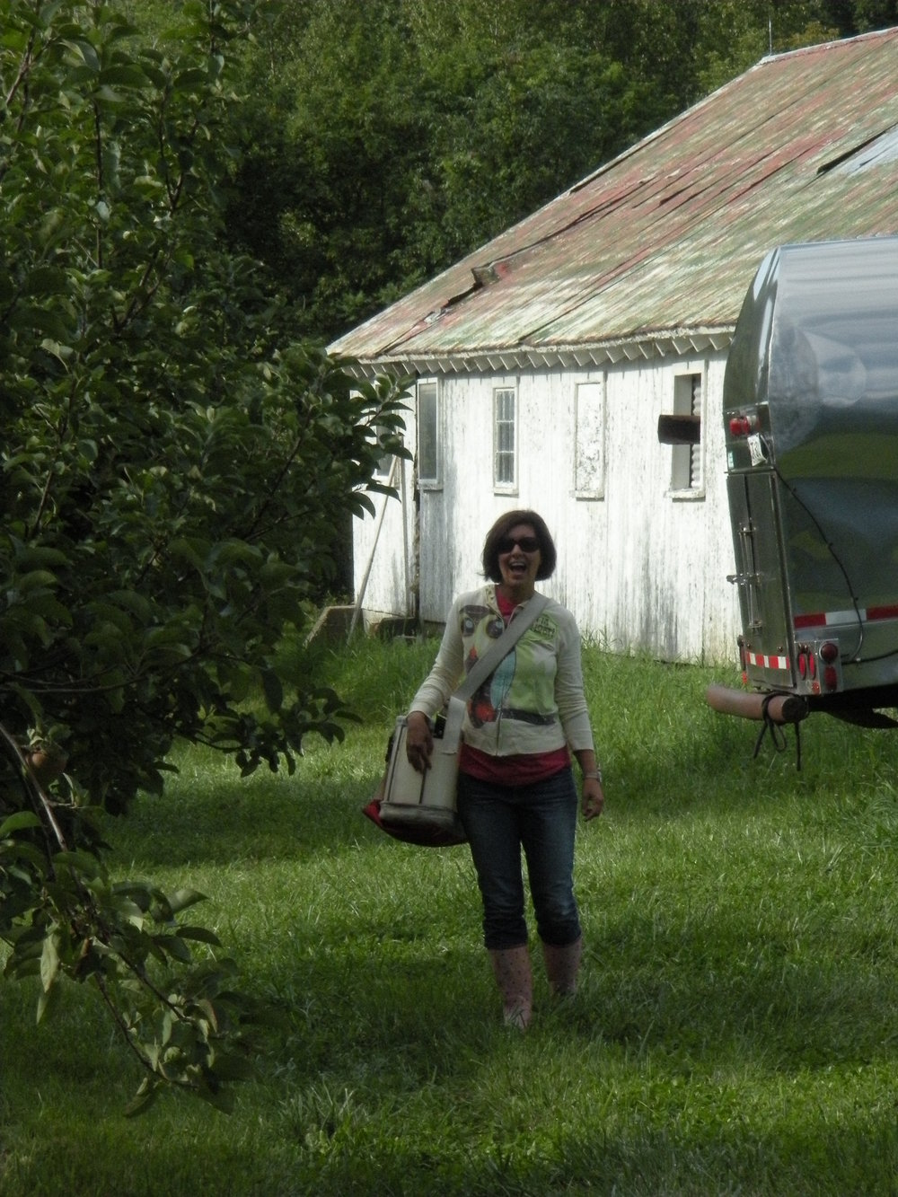 Tracy doing some field work in a New England orchard.