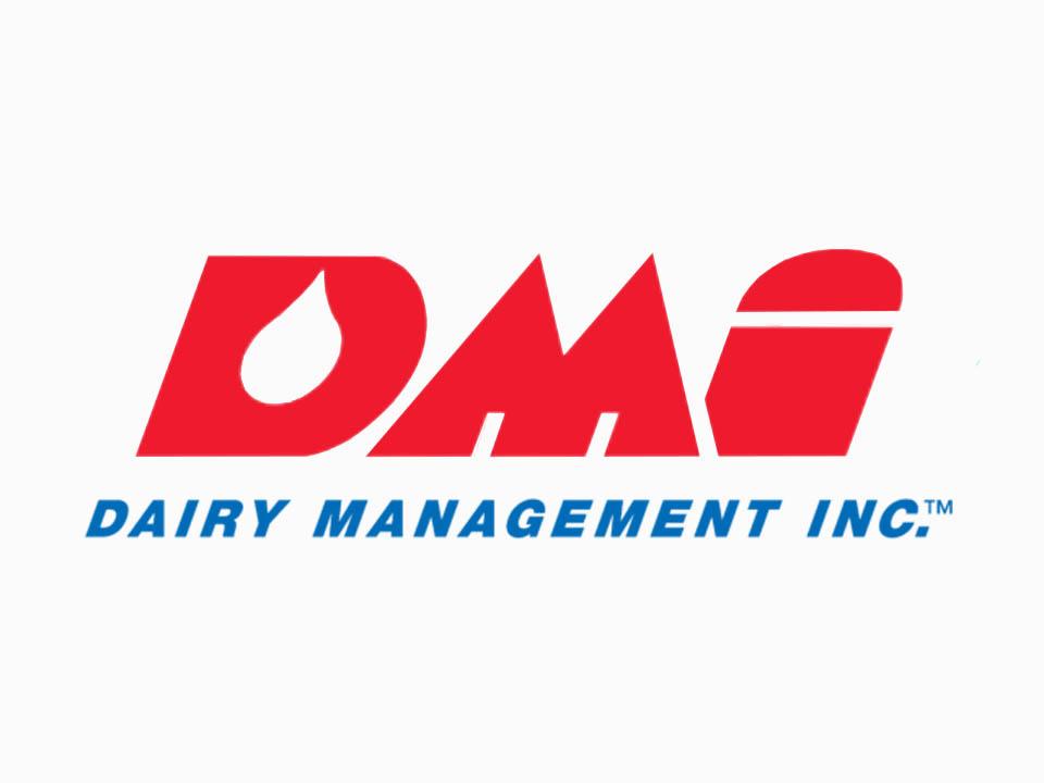 DMI logo.jpg