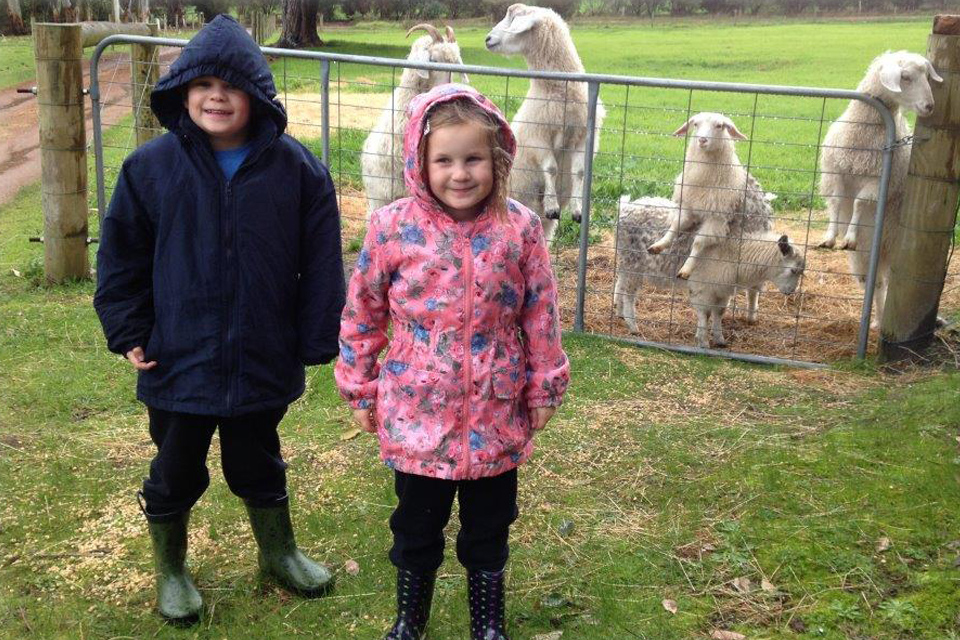 Kids enjoying the fun of the farm