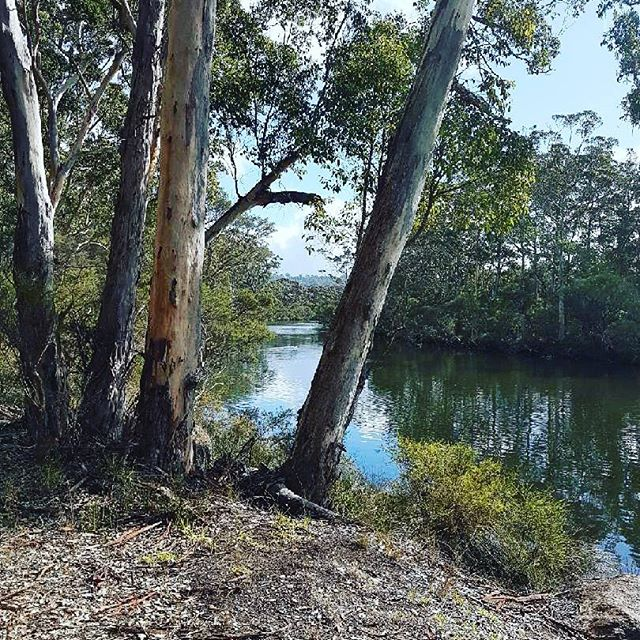 Wilson Inlet, or Koorabup, the Noongar name for Black Swan, is home to numerous secluded spots like this.