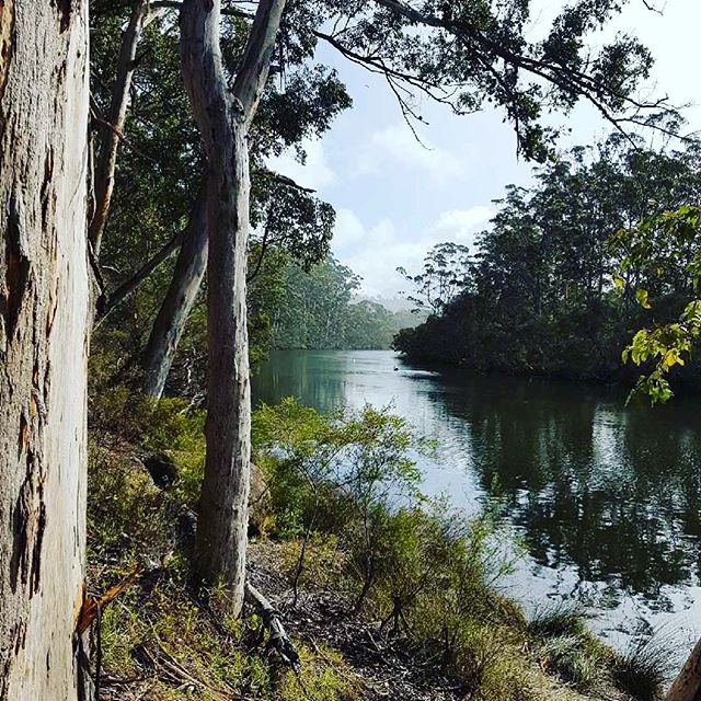 Wilson Inlet, 20 kilometres of water and wildlife to immerse yourself in.