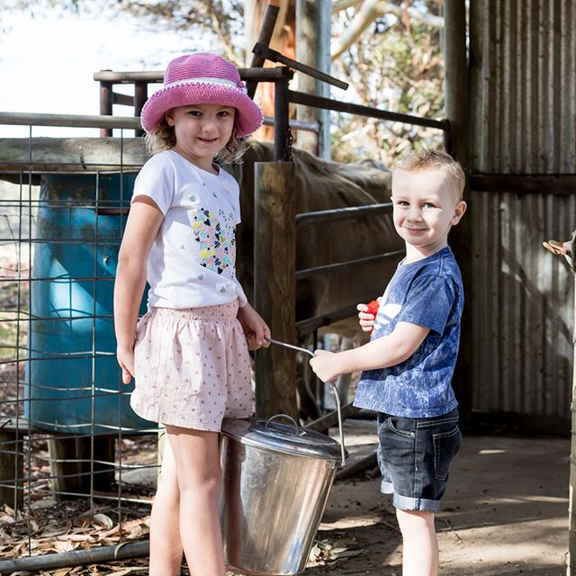 Explore what is great about farm life - kids love learning to milk the cows, collecting farm fresh eggs, riding ponies, and feeding our latest calves, goats, rabbits and cows. Misty Valley Country Cottages, right here in Denmark, Western Australia.