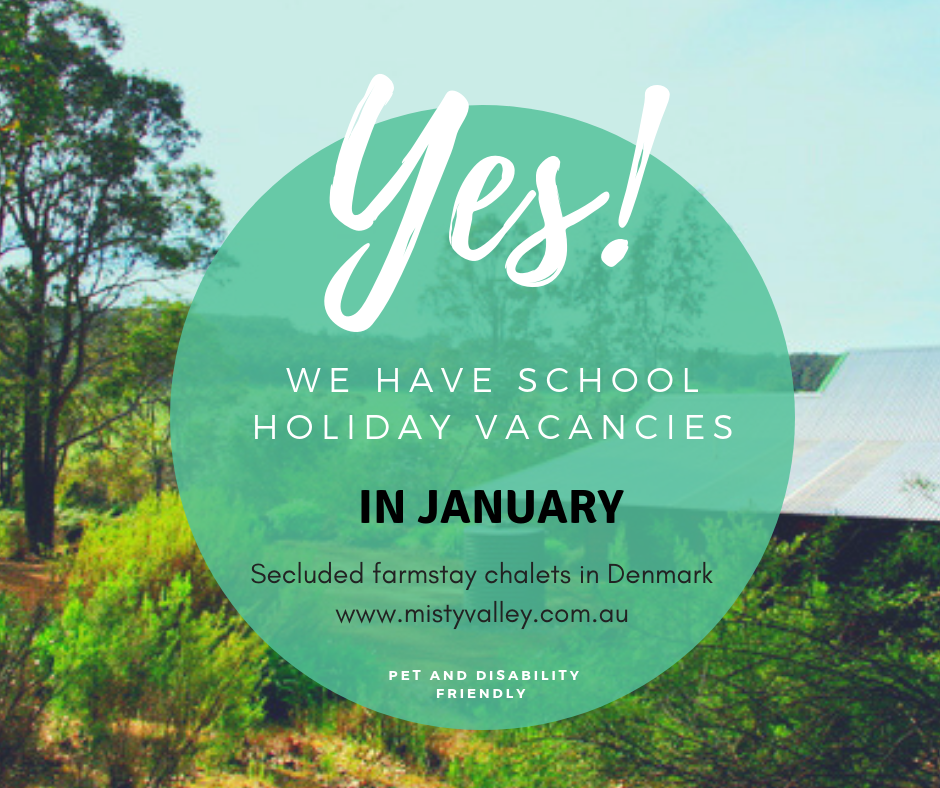accommodation in january