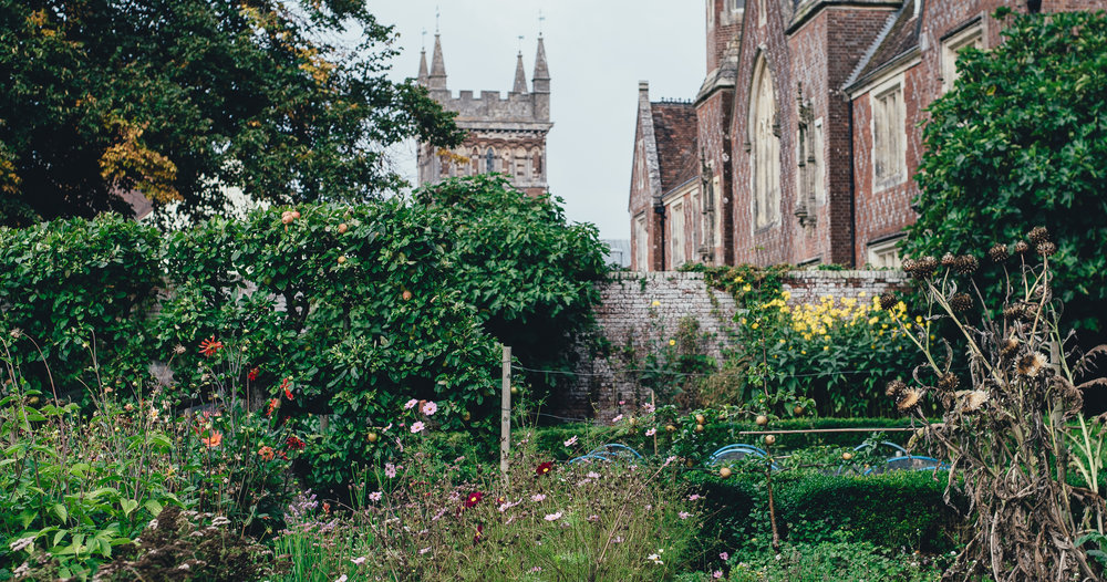 All bee and garden images credit Annie Spratt