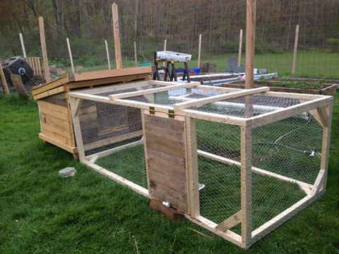 Steve's homemade duck coop and run!