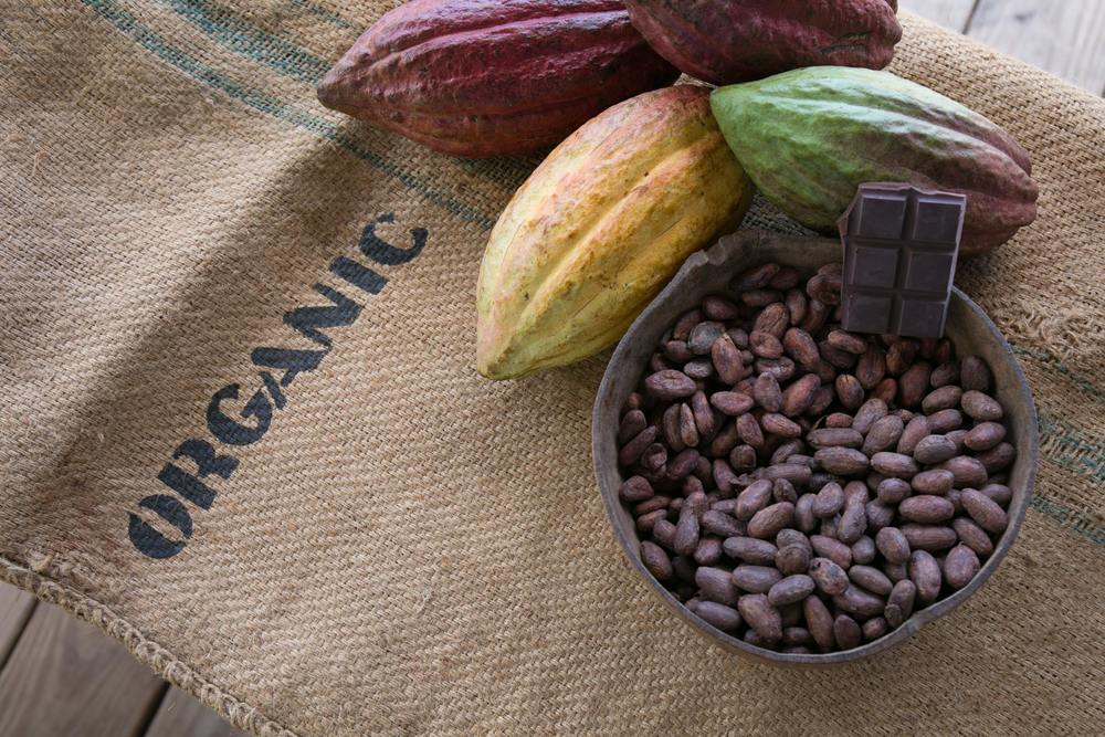 Cocoa pods, beans and the final chocolate bar (tree to bar).