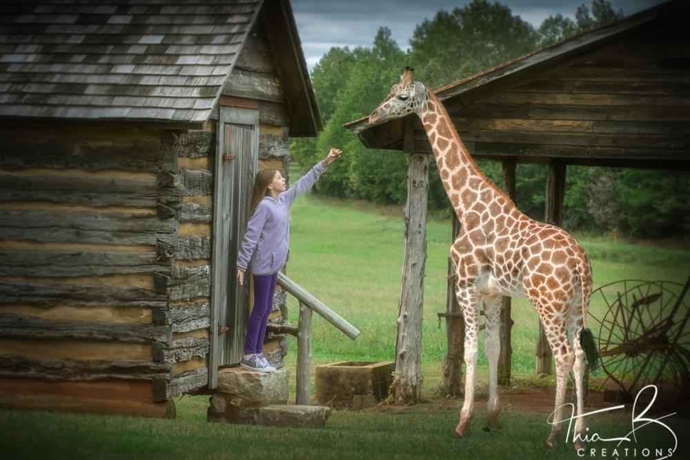 amanda giraffe1-Edit.jpg