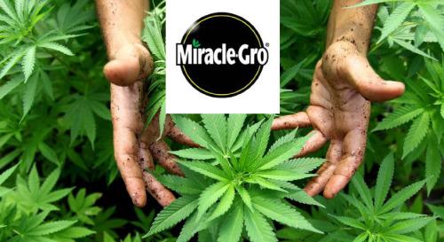 Miracle-Gro.jpg