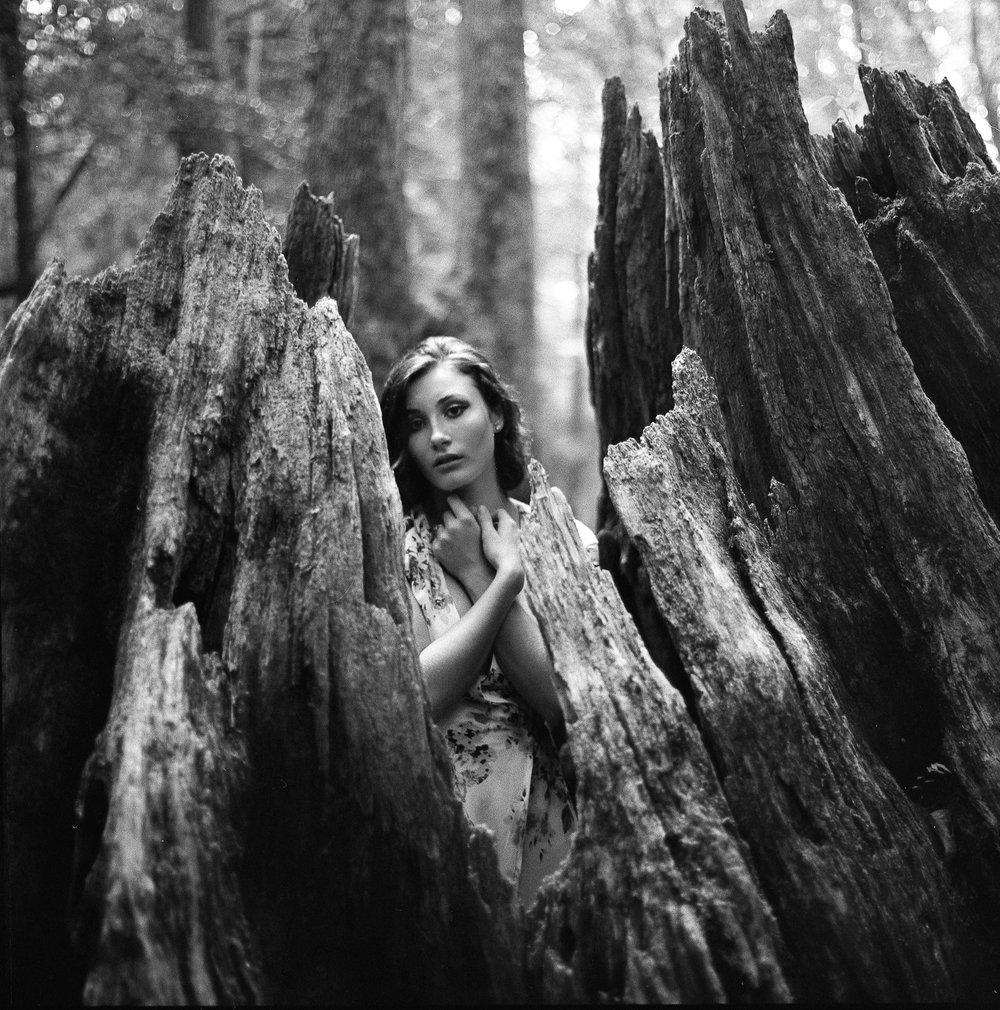 memphis-film-photographer-kowa-super-66-medium-format-film