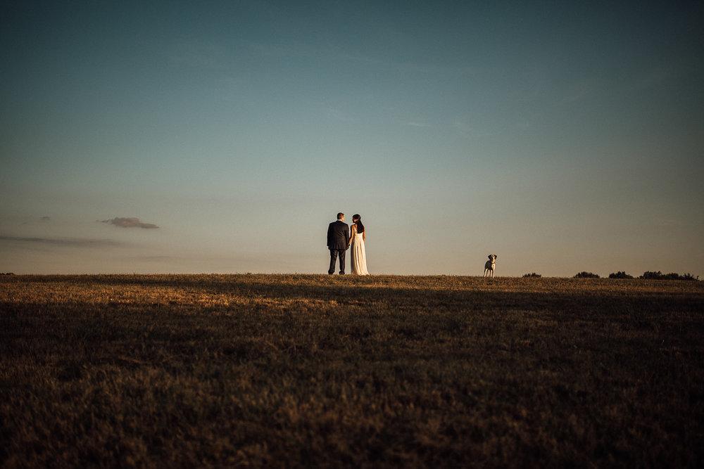 shelby-farms-dog-park-cassie-cook-photography-memphis-wedding-venues