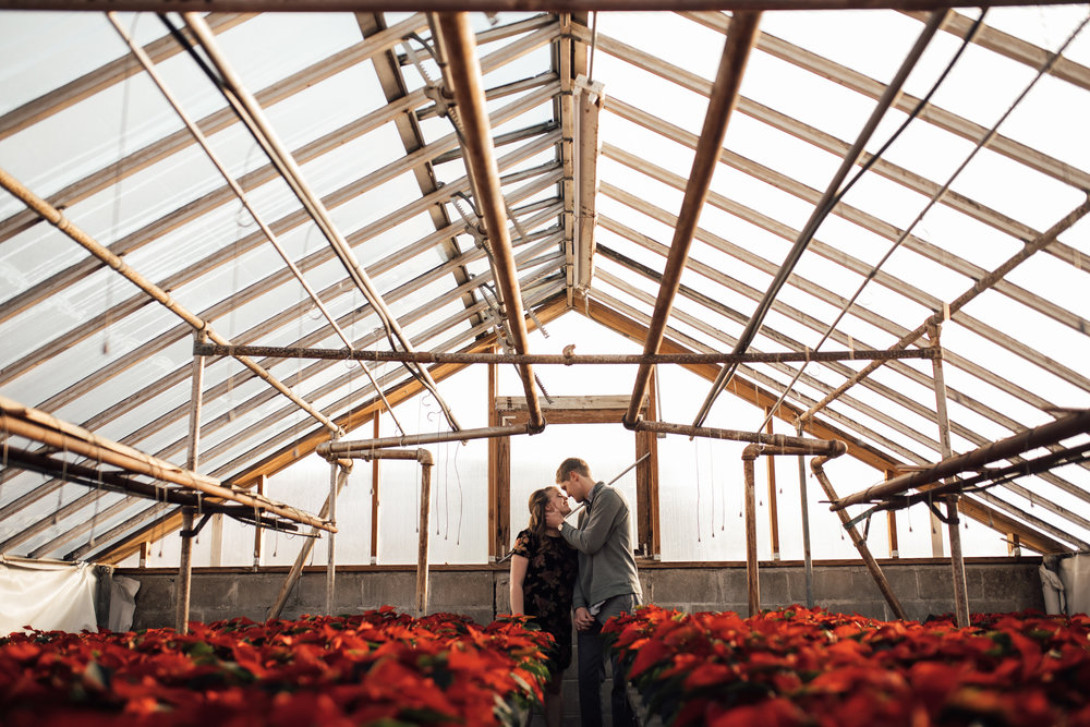 memphis-wedding-photographer-greenhouse-engagement-pictures-cassie-cook-photography-28.jpg