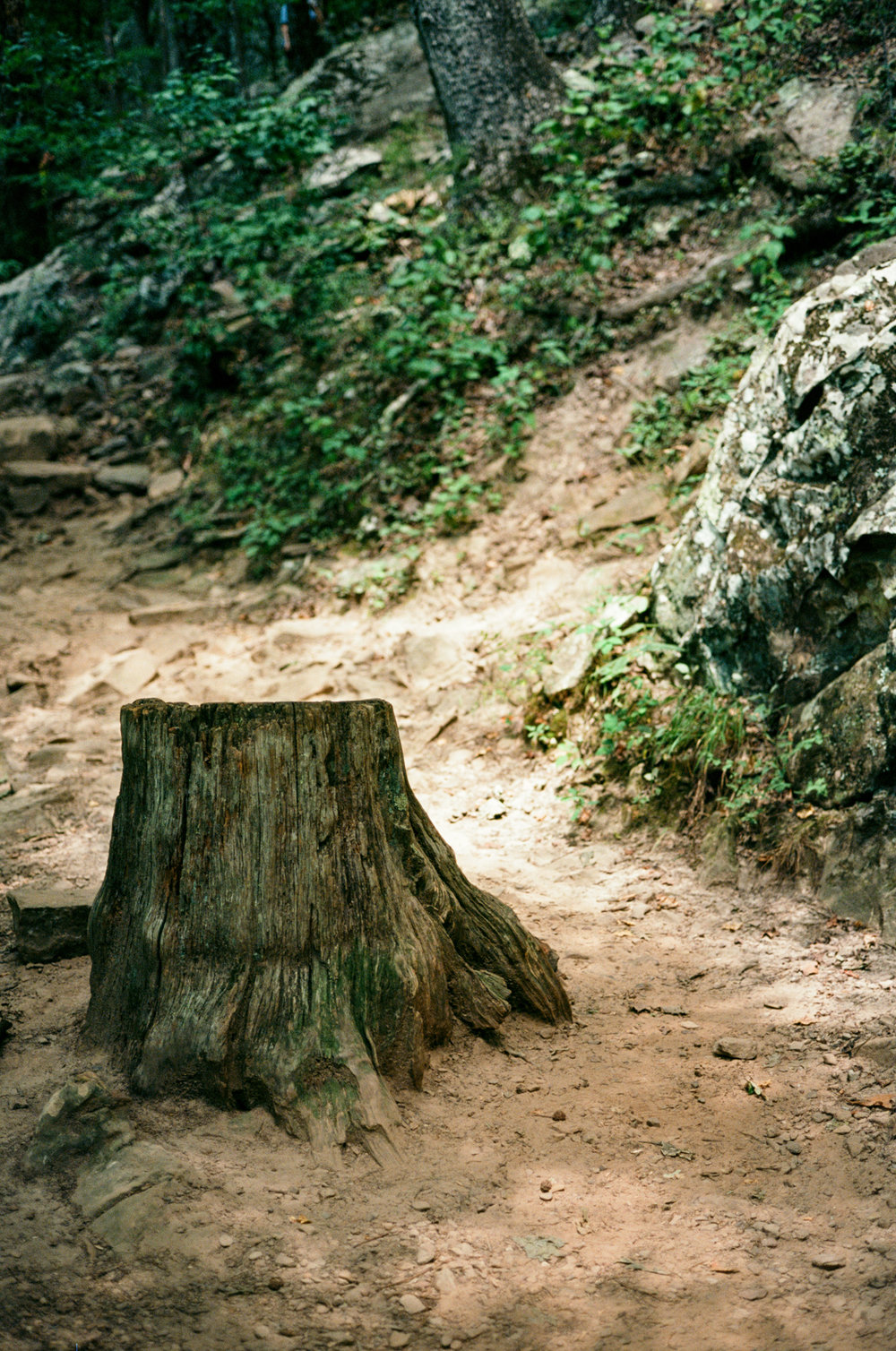 petit-jean-stgate-park-film-thewarmtharoundyou-camping-trip (36 of 37).jpg