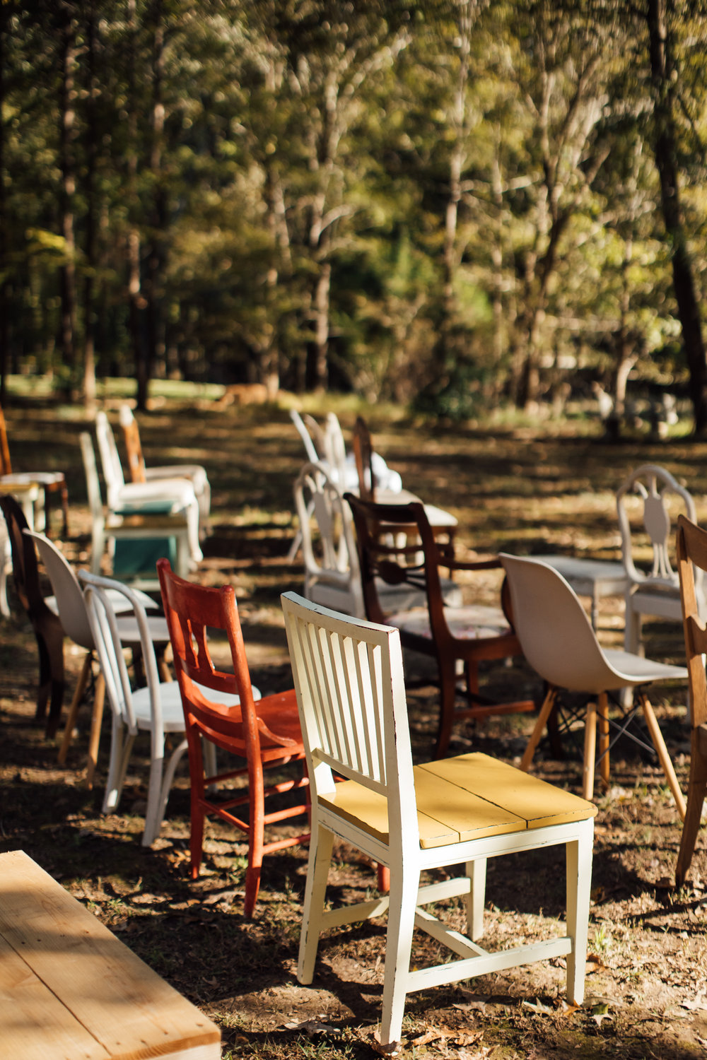fall-backyard-wedding-memphis-wedding-photographers-thewarmtharoundyou (9 of 181).jpg