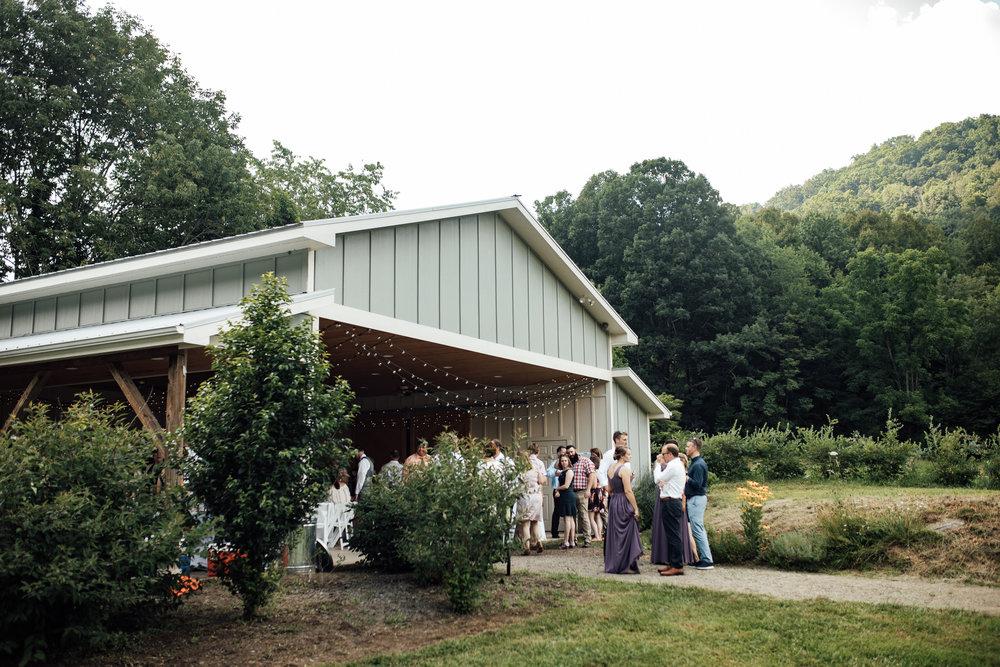 ashville-wedding-photographers-thewarmtharoundyou--backyard-asheville-wedding-mountain-wedding (116 of 244).jpg