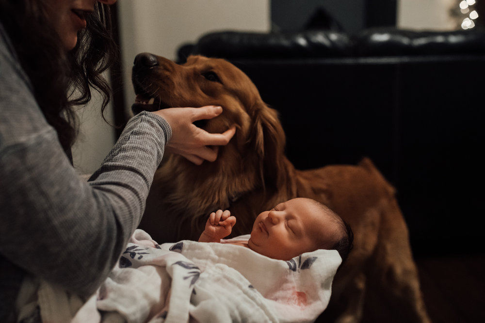 in-home-newborn-session-farrar-newborn (9 of 135).jpg