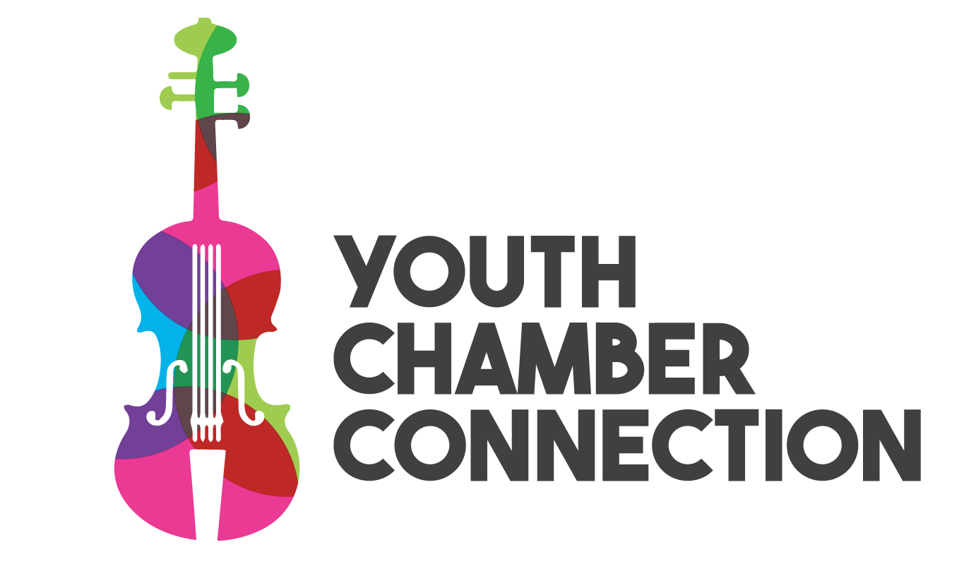 Youth Chamber Connection