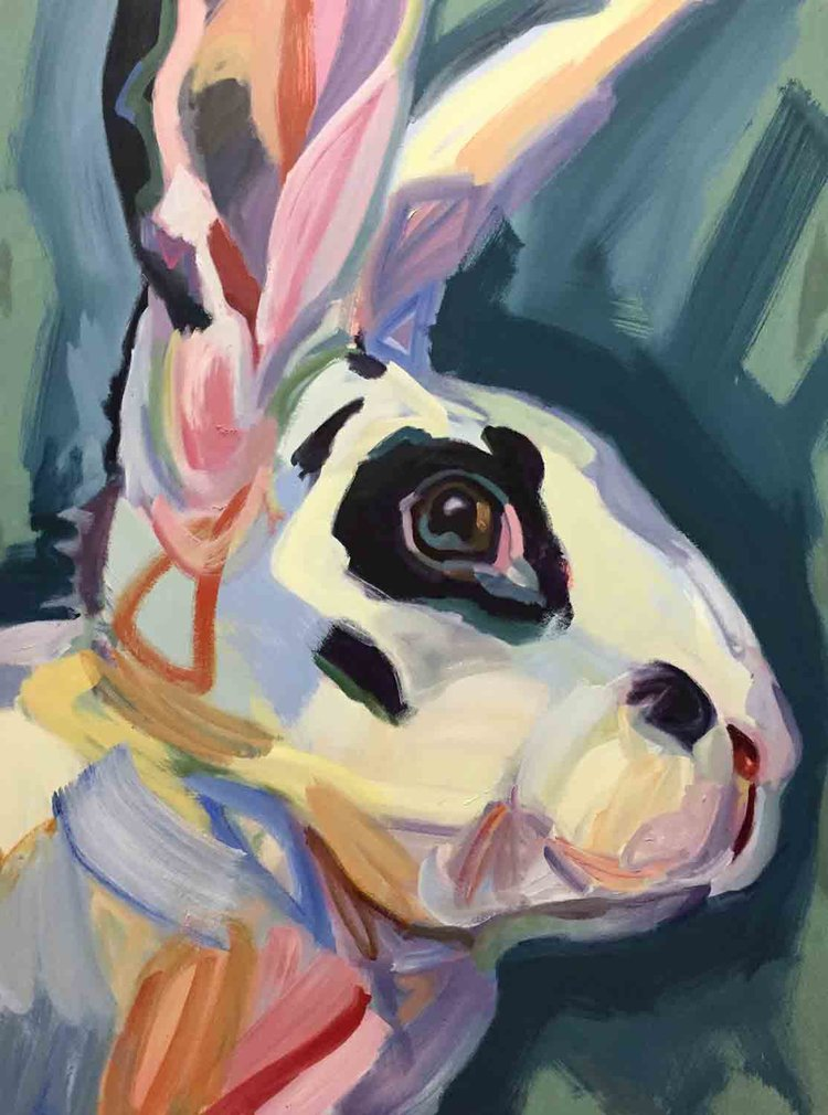 Rabbit15_DM.jpg