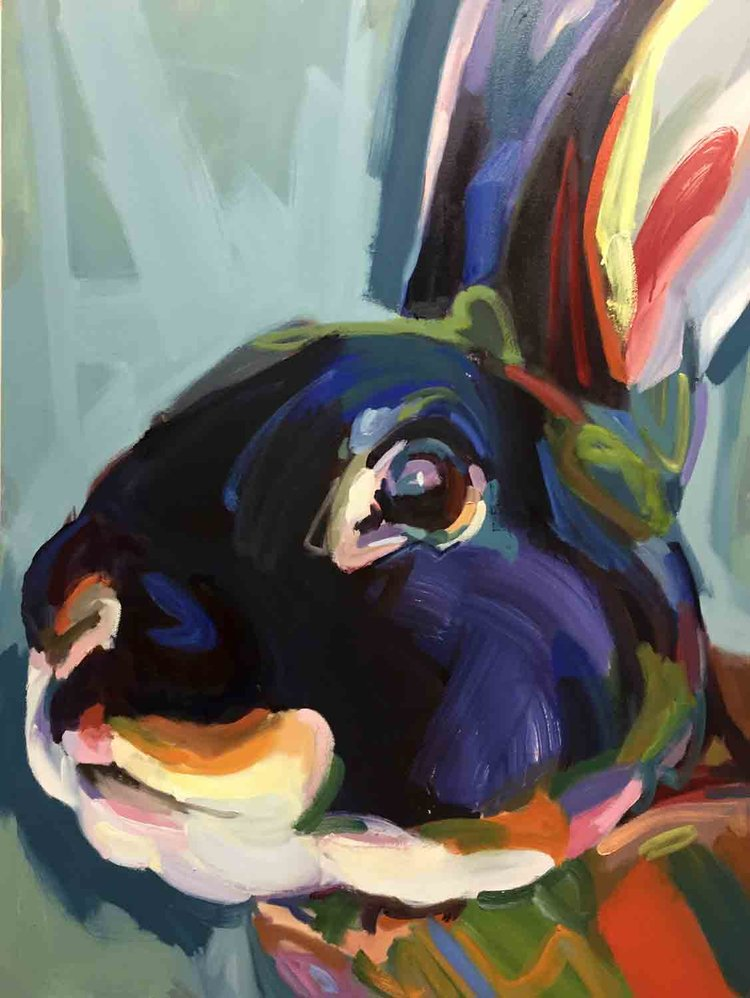 Rabbit11_DM.jpg
