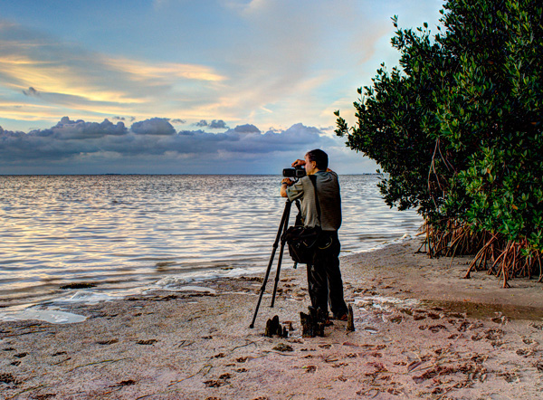 David Lawrence is a member of the following professional organizations.    American Society of Media Photographers    North American Nature Photographers Association    Professional Association of Visual Artists