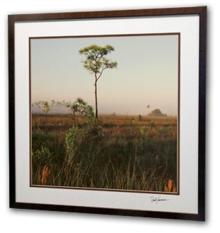 Shown above is a 24 x24 inch acrylic image panel with a creative mat framed using an antimicrobial treated picture frame. Artwork sizes range from 16x24 inches to 48 x 96 inches.