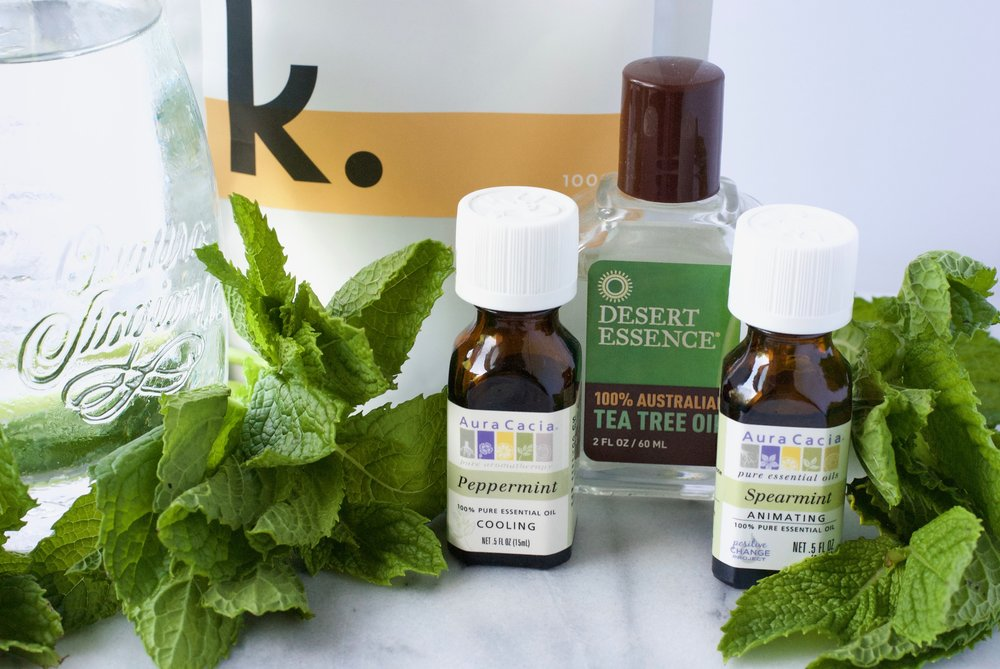 Beauty by brittany DIY peppermint spearmint tea tree oil whitening mouthwash