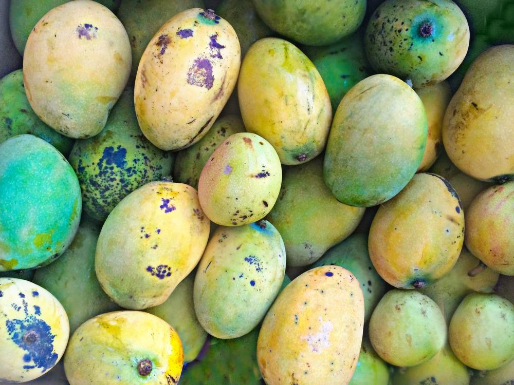 mango box vegan