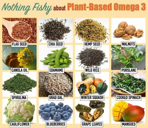 sources d'oméga 3 végétal vegan