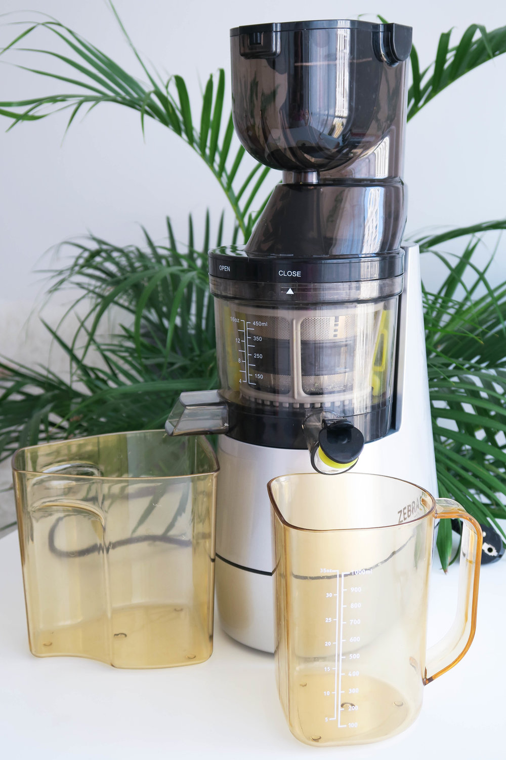 Zebra ByZoo juicer review