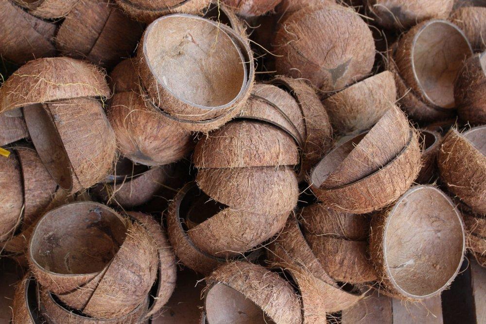 photo des CoconutBowls avant d'être polis