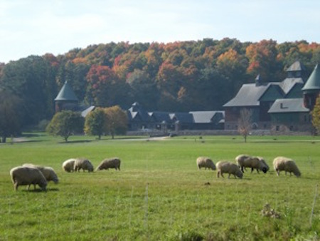 Sheep at Shelburne Farms.jpg