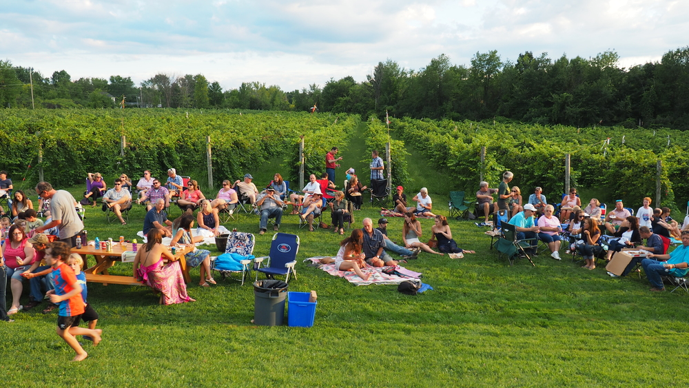 People enjoying an event on the vineyard grounds