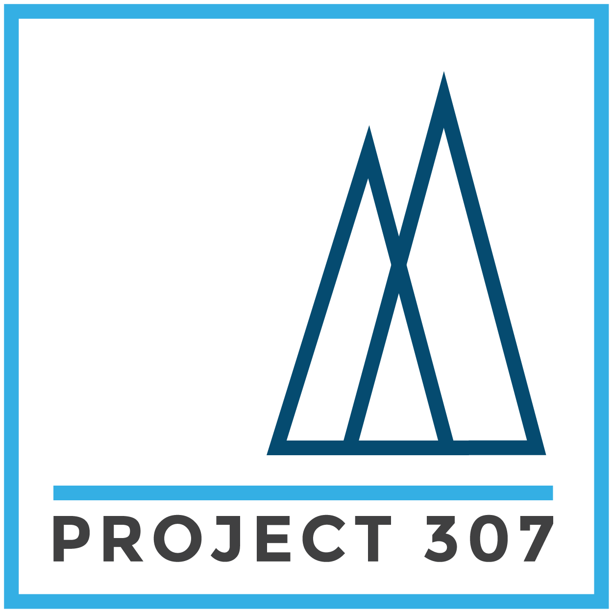 Project 307